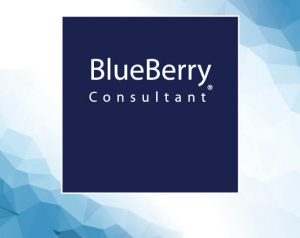 blueberry consultant